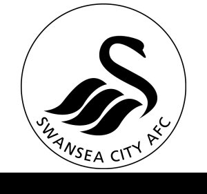​Swansea defender Richards chased by Premier League clubs