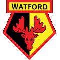Watford - News