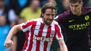 Stoke midfielder Joe Allen: Hughes doesn't deserve blame