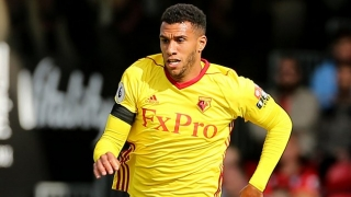 Fiorentina ask Watford for Capoue price