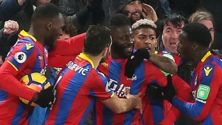 Crystal Palace chairman Steve Parish grateful to fans for staying positive