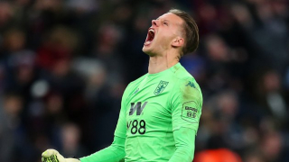 DONE DEAL: Bournemouth sign ex-Norwich keeper Nyland