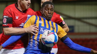 Shrewsbury boss Ricketts hails Spurs attacker Tracey after impressive hat-trick