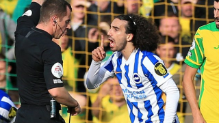 Brighton boss Potter on Norwich: Hard-fought point
